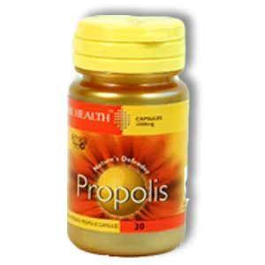Propolis Bee Health